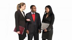 Diverse Group of Business Professionals collaborate - stock footage