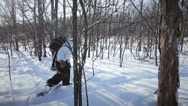 Stock Video Footage of Side View Woman Snowshoeing in nature with a backpaclk (wide angle lens)