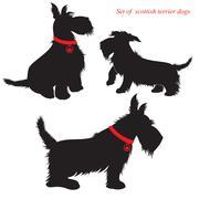Joukko Skotlannin terrieri koirat siluetteja Piirros