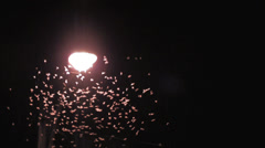 Insects swarm streetlight long shot night Stock Footage