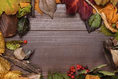 colorful autumn leaves frame on the wooden background - stock photo