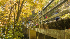 Visitors Walking on Bridge Over Linville, NC River in Fall Stock Footage