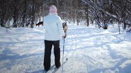Stock Video Footage of Amazing video of a Woman Cross-Country Skiing With Deers in Wild Nature