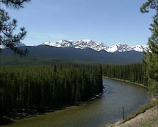 Bow valley and river in Banff National Park, UNESCO World Heritage Stock Footage