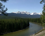 Stock Video Footage of Bow valley and river in Banff National Park, UNESCO World Heritage
