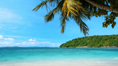Palm tree, tranquil tropical sea and blue sky Stock Footage