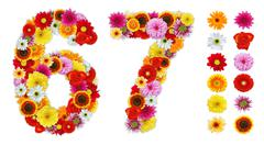 Numbers 6 and 7 made of various flowers Stock Photos