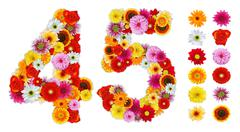 numbers 4 and 5 made of various flowers - stock photo