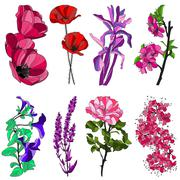 Set of decorative flowers: tulip, poppy, iris, cherry, viola, violet and rose Stock Illustration