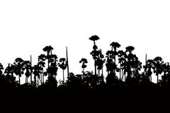 silhouette sugar palm - stock illustration