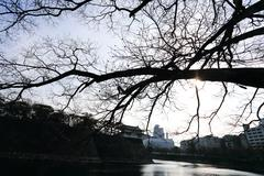 a moat surrounding osaka castle in japan, winter - stock photo