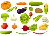 Stock Illustration of vegetables set - cucumber, tomato, radish, green pepper, eggplant, onion, potato