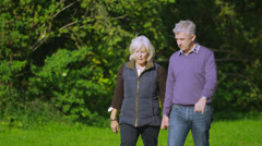Happy mature couple walking in the countryside on an autumn day - stock footage