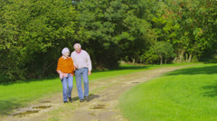 Affectionate senior couple hold hands as they take a walk in the countryside - stock footage