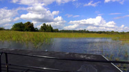 Stock Video Footage of Airboat Ride through wetlands in Central Florida