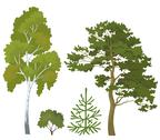 Stock Illustration of Forest plants set