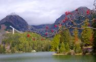 Stock Photo of strbske pleso, high tatras, slovakia
