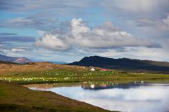 Iceland, landscape of Iceland shore Stock Photos