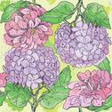 Stock Illustration of floral seamless pattern with hand drawn flowers - gardenia and peony.