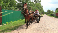Stock Video Footage of Family rides on horse cart rubber wheels, summer countryside, click for HD