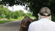 Stock Video Footage of Horse cart driver riding countryside, harness animal, man in cap, click for HD