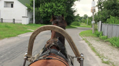 Harnessed horse drives wheel cart down village road, driver pov, click for HD Stock Footage