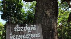 Sign at tree used to beat victims to death, Choeung Ek, Killing Fields, Cambodia Stock Footage