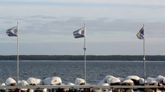 Three waving flags on the shore Stock Footage