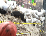 Stock Video Footage of Barricades of snow barrels tyres, revolutionary environment