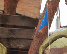 EU flag on wooden barricade, protesters long for European future, click for HD Stock Footage