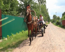 Family rides on horse cart rubber wheels, summer countryside, click for HD Stock Footage