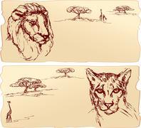 lion and cheetah heads. hand drawn ink portrait horizontal sketch. - stock illustration