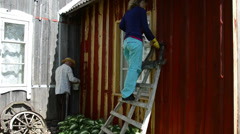 Painter woman on ladder paint wood house wall with brush Stock Footage