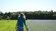 Pretty woman girl walk meadow and cornflower field pick bloom Stock Footage