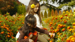 Big Sister Picks A Flower And Puts It In Little Sister's Hair Stock Footage