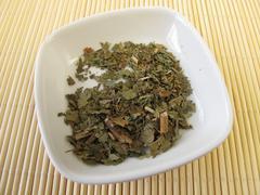 Witch Hazel leaves, Hamamelis folium - stock photo