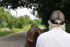 Horse cart driver riding countryside, harness animal, man in cap, click for HD Stock Footage
