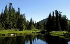 Mountain Lake in the High Forest Near Mount Hood Stock Photos