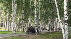 Young couple are relaxing on bench in the birch grove. Stock Footage