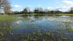 Wide shot of flooded soccer pitch (dolly) Stock Footage