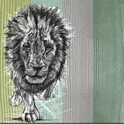 Luonnos iso mies afrikkalainen leijona Piirros