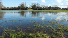 Goal post at end of flooded field (dolly) Stock Footage