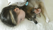 Stock Video Footage of little girl falls asleep hugging a sleeping puppy, top view