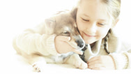 Stock Video Footage of little girl having fun playing with a puppy huskies