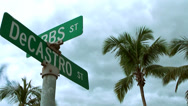 Stock Video Footage of British Virgin Islands Tortola Road Town 023 palm trees and traffic signs