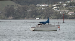Boat moored in Otago Harbour Stock Footage