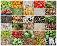 Grid of vegetables and fruits Stock Photos