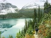 Stock Photo of lake o'hara, yoho national park, british columbia, canada