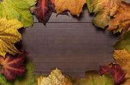 Stock Photo of colorful autumn leaves frame on wooden background
