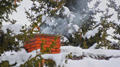 House chimney detail with smoke comming out of it among snow covered pine tre Stock Footage